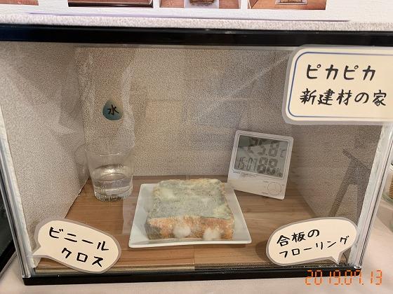 カビパンレポート1 | 熊本の地元工務店ファミリアホーム