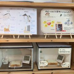 カビ実験|熊本の注文住宅工務店ファミリアホーム